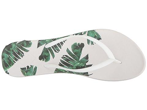 Becca Leavesbird Dreaminmetallic Rayas Plátano Impresión Freewaters Paradisecalifornia De aqdnwpH1Hx
