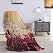 Tr.G Floral Commercial Grade Printed Blanket Spring Summer Season Inspired Garden Flowers Poppies Photo Image Queen King W80 x L60 Inch Pale Pink Khaki and Pink