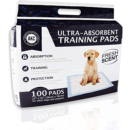 Amazon Com American Kennel Club Akc Training Pads White And Blue 22 X 22 Pack Of 100 Akc 62920 Pet Supplies