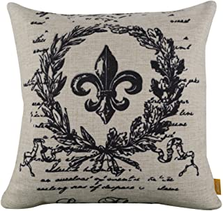 seamlesswood Fleur De Lis Square Custom Throw Pillow Case Personalized Cushion Cover Pillowcase Pillow Cover 20x20inch