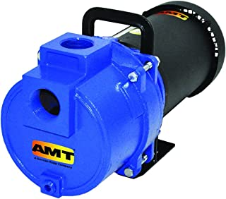 3 Phase 1-1//2 NPT Female Suction 1 HP AMT Pump 5483-98 High Volume Straight Centrifugal Pump Curve C 230//460V Stainless Steel 1-1//4 NPT Female Discharge Port