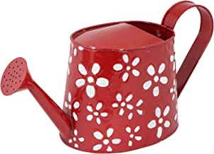 Rvold Hand Painted Rust Free Metal Watering Can for Gardening Plants 2.5 Ltrs Capacity (Color May Vary)