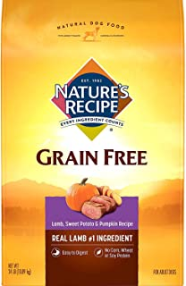 Sponsored Ad - Nature's Recipe Grain Free Easy to Digest Dry Dog Food with Real Meat, Sweet Potato And Pumpkin