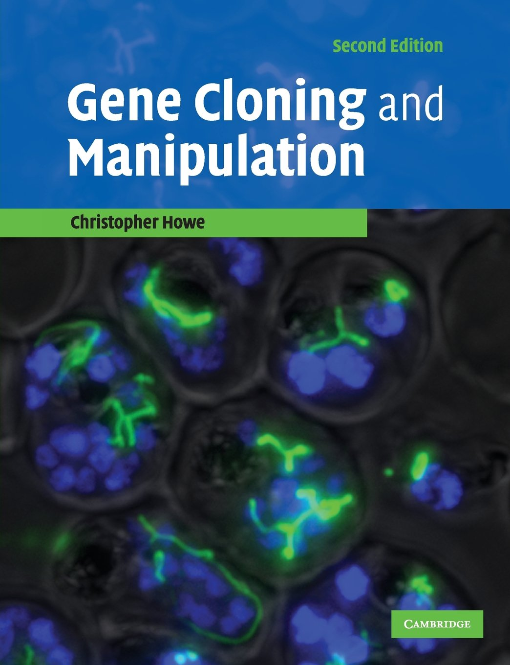 Image OfGene Cloning And Manipulation