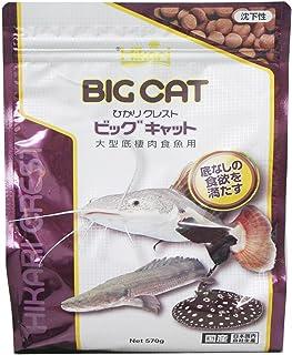 ヒカリ (Hikari) ひかりクレスト ビッグキャット 大型底棲肉食魚用 570グラム (x 1)