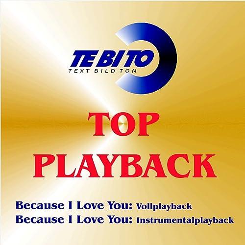 Because I Love You (Karaoke Version) [Instrumental Playback