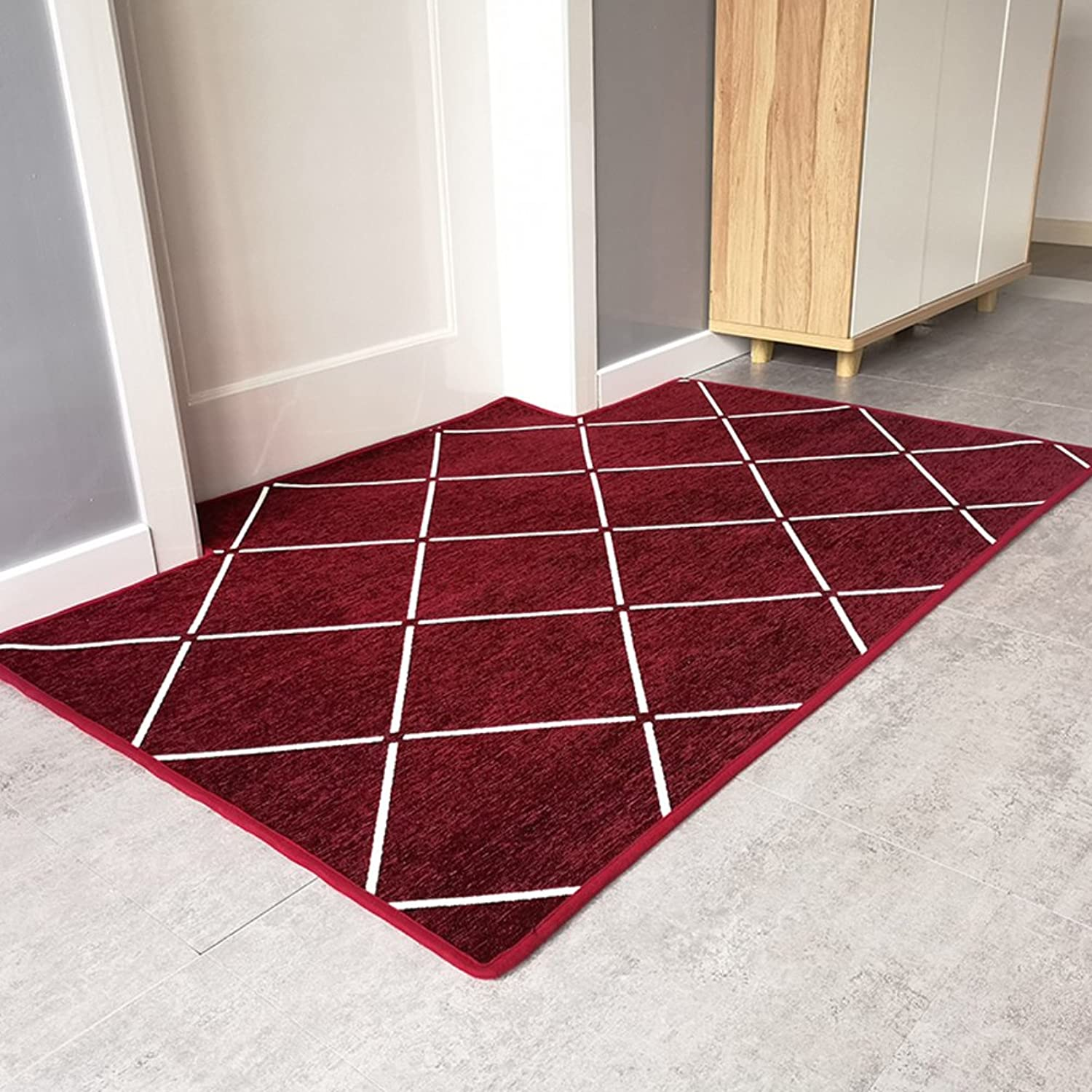 Non Slip Easy Clean Doormat,Super Soft Durable Area Rug Indoor Outdoor Small Mat Modern Plush Carpet Entrance Rug-D 120x160cm(47x63inch)