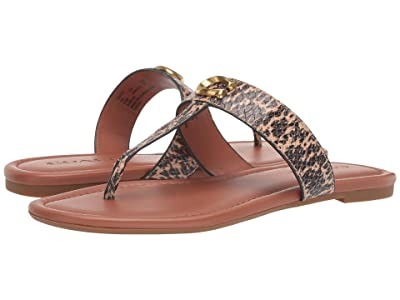 COACH Jessie Thong Sandal with Signature Buckle (Beechwood Printed Leather) Women