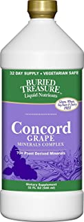 Buried Treasure Concord Grape Colloidal Mineral Complex with over 70 Plant Derived Minerals Certified NON-GMO Vegetarian Safe Daily Essential and Trace Minerals 32 oz Natural Grape Flavor