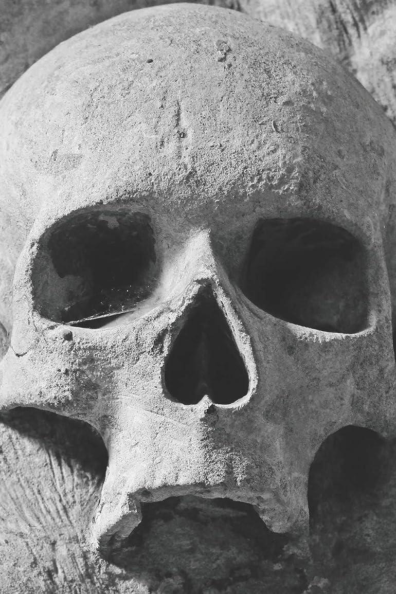 詳細な作業難破船Skeleton Skull Gothic Notebook