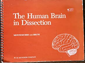 The human brain in dissection