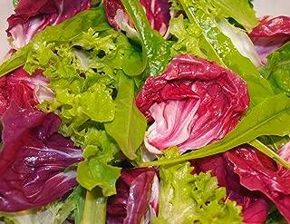 AGROBITS Gourm TUSN COUPE ENCORE ROUGE VIENNENT VERT RADICCO MIX GRAMMES VOIR