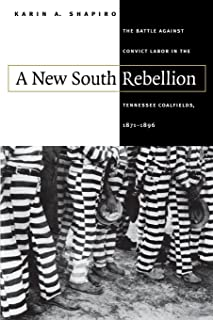 A New South Rebellion: The Battle against Convict Labor in the Tennessee Coalfields, 1871-1896 (Fred W. Morrison Series in Southern Studies)
