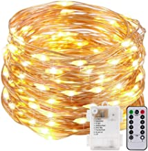 Fairy String Lights with Remote Control - Micro Firefly Lights 100 LED Battery Operated 33Foot DIY Fairy Lights for Easter Garden Wedding Party Bedroom Decoration - Warm White