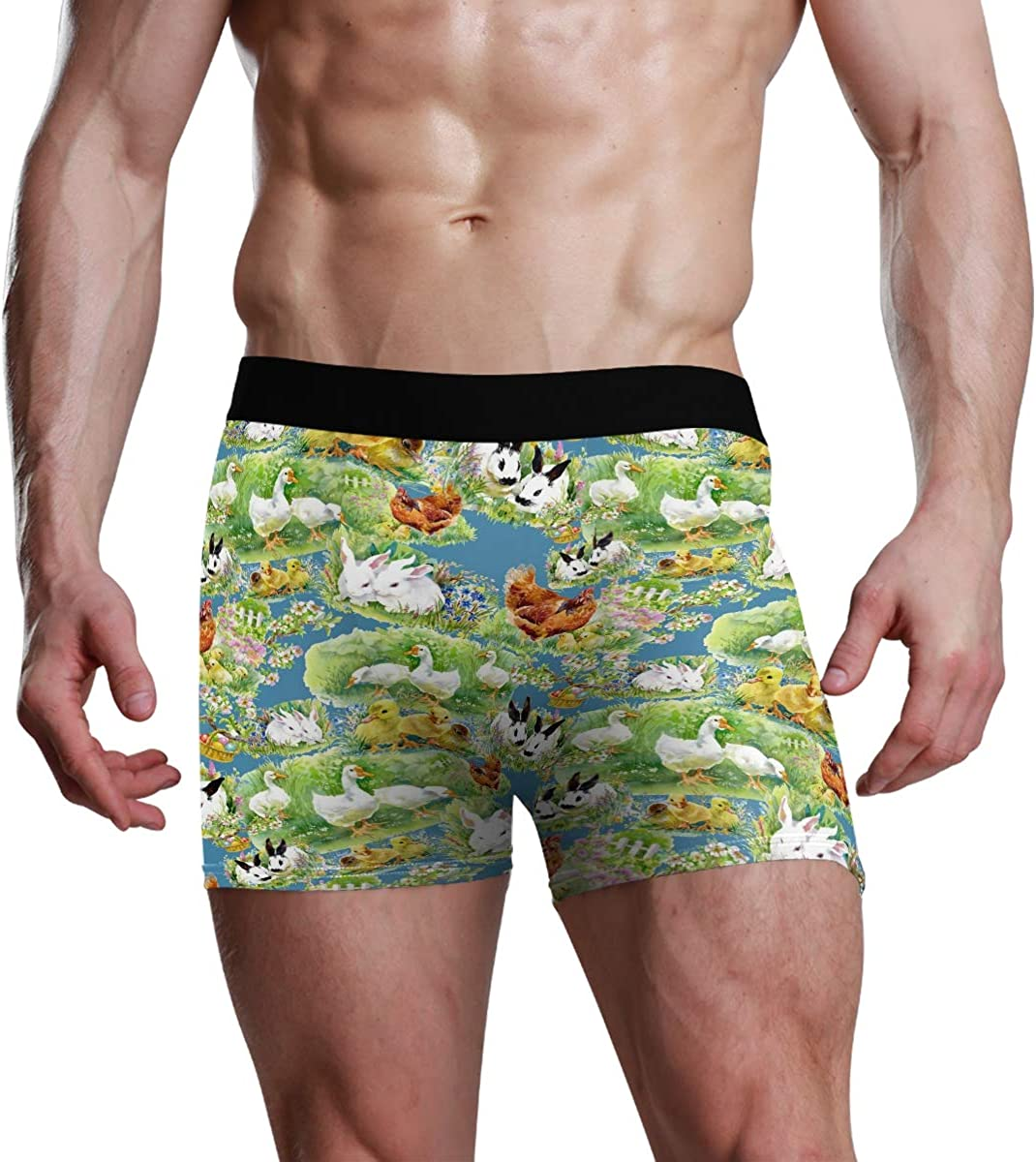 Mens Boxer Briefs Cute Watercolor Ducklings Rooster Bunny Animal Low Rise Trunks Underwear Breathable Bikini Boys