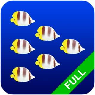 Fish Swarm Live Wallpaper
