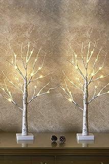 Set of 2- EAMBRITE 2FT 24LT Warm White LED Birch Tree Light Tabletop Bonsai Tree Light..