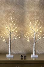 Set of 2- EAMBRITE 2FT 24LT Warm White LED Birch Tree Light Tabletop Bonsai Tree Light Jewelry Holder Decor for Home Party...