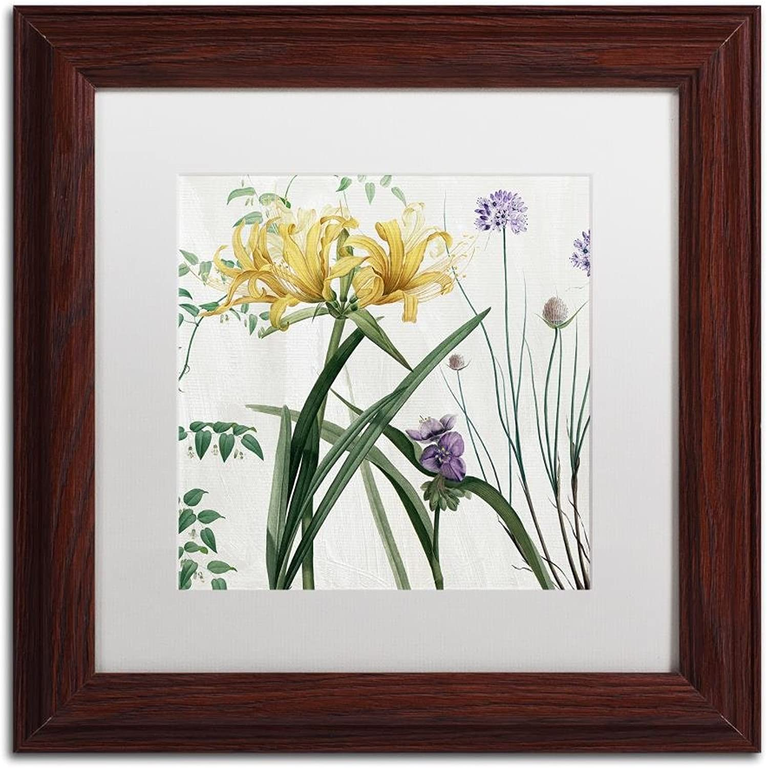Trademark Fine Art Softly IV by color Bakery, White Matte, Wood Frame 11x11