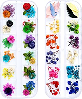 iFancer 90 Pcs Nail Dried Flowers 36 Colors 3D Nail Art Real Flowers Nature Dry Petals Leaves Decor for Nail Art Design Manicure Decoration