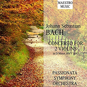 J. S. Bach: Live- Concerto For 2 Violins In D Minor, BWV 1043