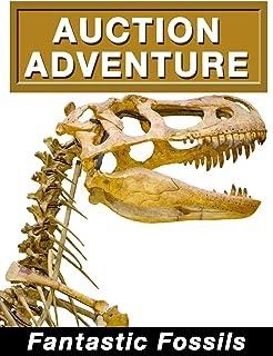 Auction Adventure: Fantastic Fossils