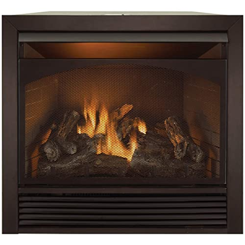 Outstanding Propane Gas Fireplace Insert Amazon Com Interior Design Ideas Clesiryabchikinfo