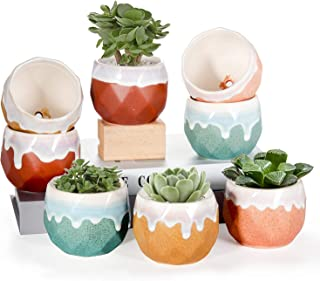 EHWINE 3.5 Inch Succulent Pots, 8 Pack Indoor Plant Pots with Drainage Hole, Natural Color Contrast Ceramic Pot