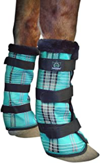 Best fly protection for horses while riding Reviews