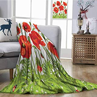 Blanket sheets Ladybugs Decorations Collection Horizontal Border with Poppy Flower Bud Poppies Chamomile Wildflowers Lawn Design Traveling,Hiking,Camping,Full Queen,TV,Cabin W54
