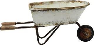 Best decorative metal wheelbarrow Reviews