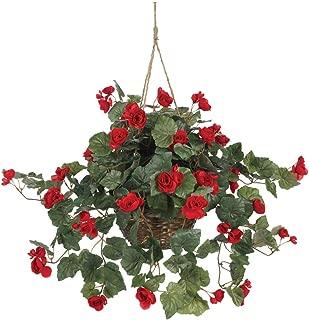 orange begonia hanging basket