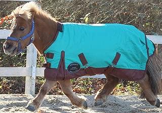 Chicks Saddlery Showman Large Mini/Pony 1200 Denier Adjustable Waterproof Turnout Blanket - 300 Grams Fill