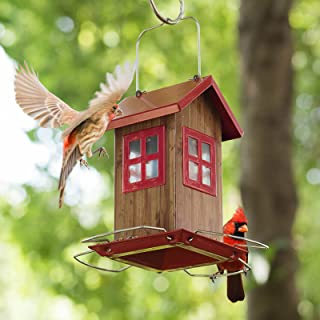 Kingsyard Small Bird House Feeders for Outside Hanging Bird Feeder Outdoor Garden Decorations NOT Squirrel Proof