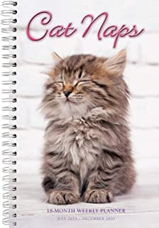 Cat Naps 2020 Day Planner 18-Month - Daily Weekly Monthly Planner Yearly Agenda Organizer: July 2019 - December 2020