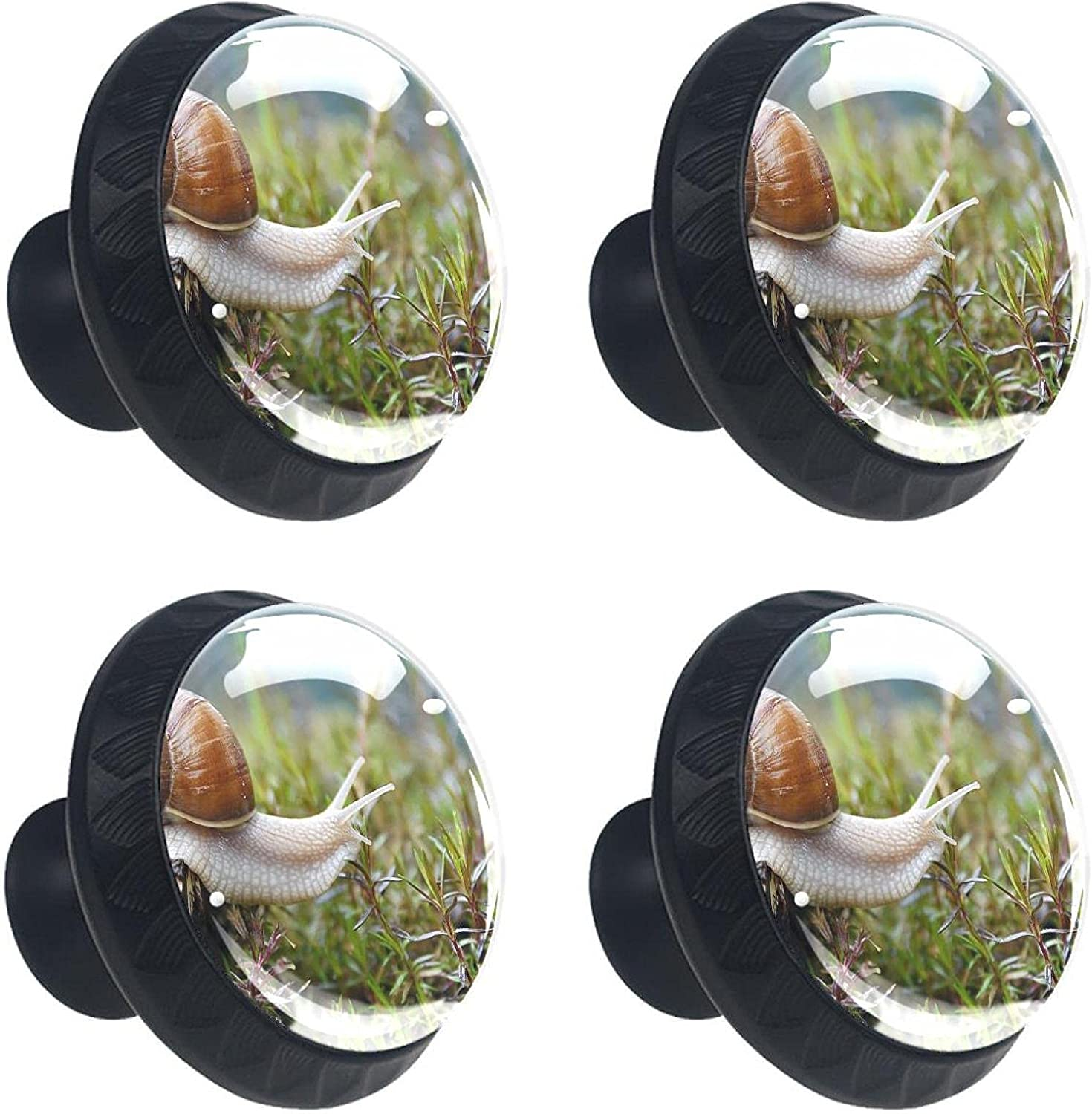 Animal SEAL limited product Elegant Snail 1.38×1.10in