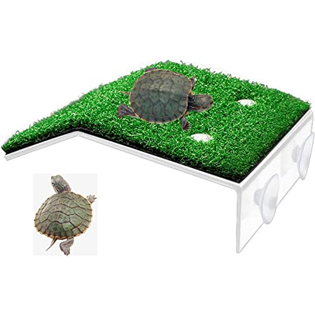 S B Blesiya Plastic Floating Turtle Pier Rectangular Terrapin Dock Frogs Reptile Ramp Platform Transparent