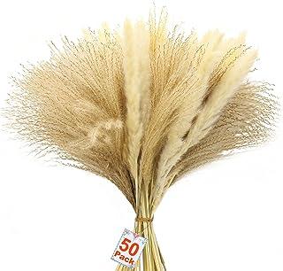AMENGNI 50 Pcs Natural Pampas Grass, Dried Pampas Grass 45cm Dried Flower Decorative Flower Arrangements Decorative Flora ...