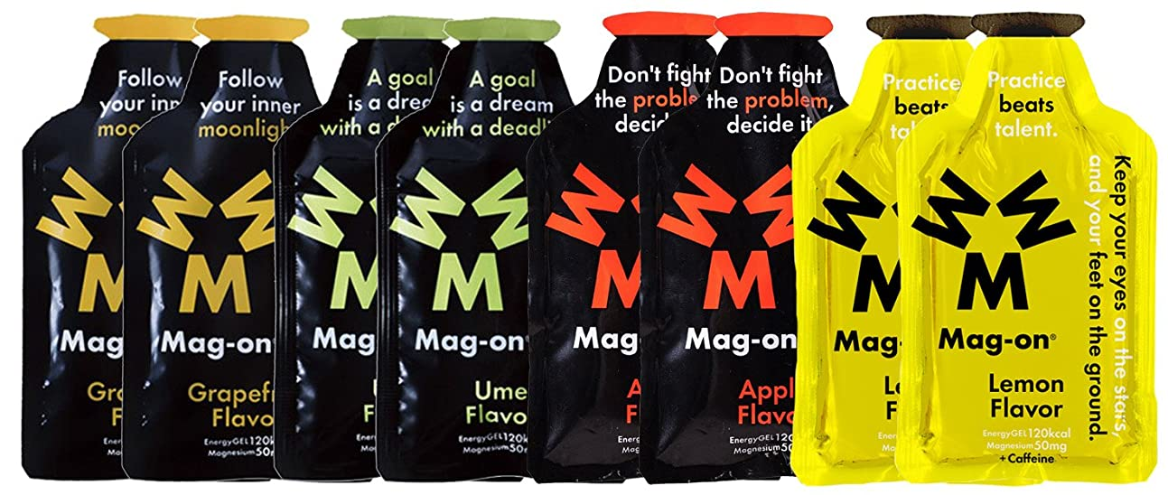 怒る離す機構Mag-on マグオン エナジージェル おためし4味各2ケ新味計8個セット