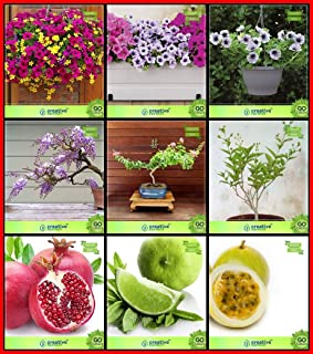 Creative Farmer Plant Lovers Combo Flower Seeds & Fruit : Pomagranate, Lemon Seeds, Passion Fruit - Yellow, Jacaranda Mimo...