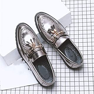 Oxford shoe Formal Oxfords for Men Date Loafers Slip on Microfiber Leather Pointed Toe Stitching Block Heel Metal Decor Tasseled CWCUICAN (Color : Silver, Size : 41 EU)