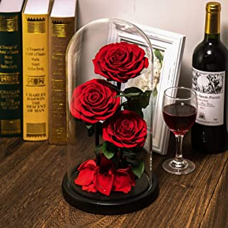 Preserved Real Rose Handmade Eternal Rose in Glass Doom Gifts for Her Valentine's Day Mother's Day Anniversary Birthday (3 Red Rose)