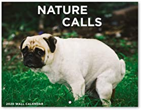 2020 Calendar - Pooping Dogs Calendar 2020 Wall Calendar with Thick Paper, Large 11