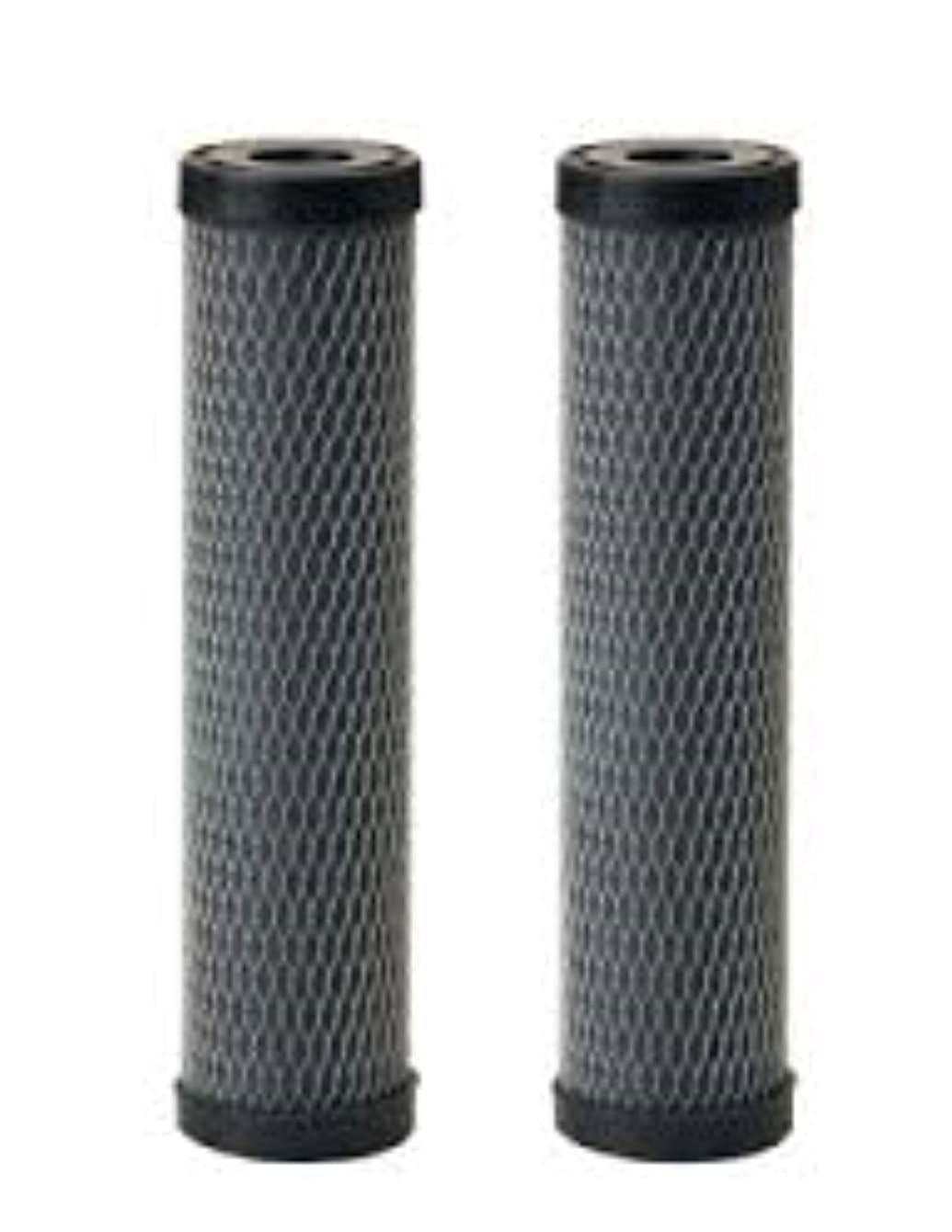 Omnifilter T01-DS Omni TO1-DS Whole House Replacement Under Sink Water Filter Carbon Wrapped Cartridge (2-Pack) Taste & Odor TO1 DS T01 DS Series C (Twin Pack) Compatible Water Filter BY CFS
