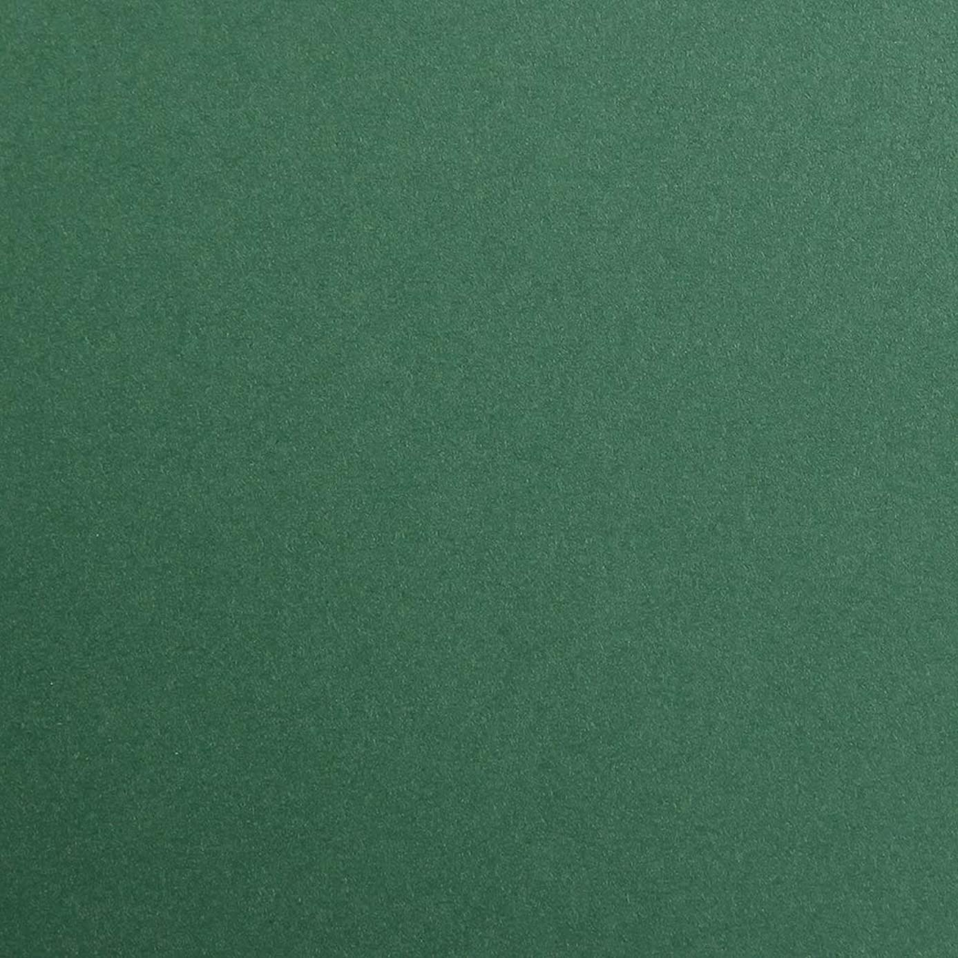 Clairefontaine Maya Coloured Smooth Drawing Paper, 270 g, 50 x 70 cm - Antique Green, Pack of 25 Sheets