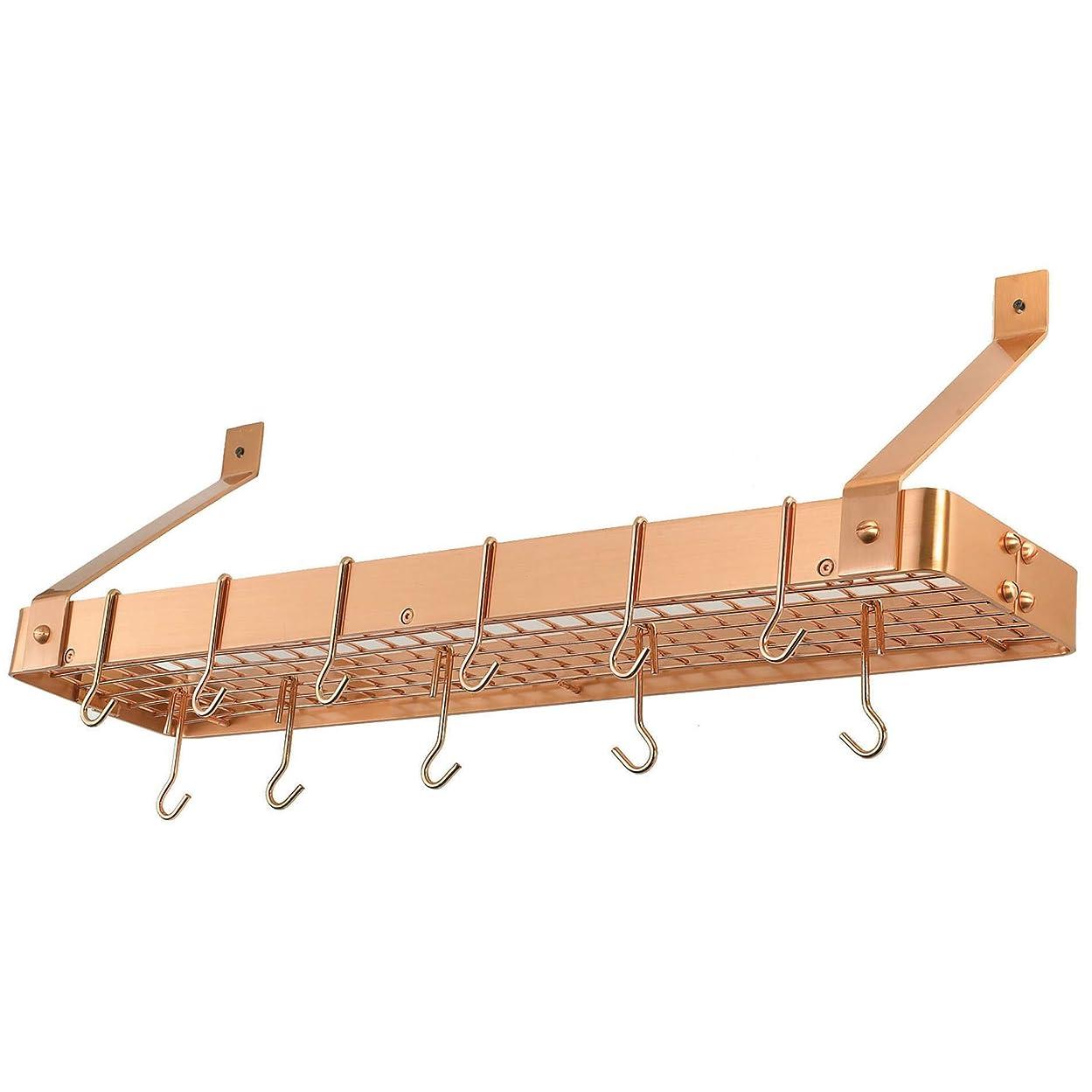 任意承認うなるMISC 12フック ポットラック 壁取り付け ハンギングオーガナイザー フライパン/キッチン/調理器具ホルダー用 スチールサテン銅