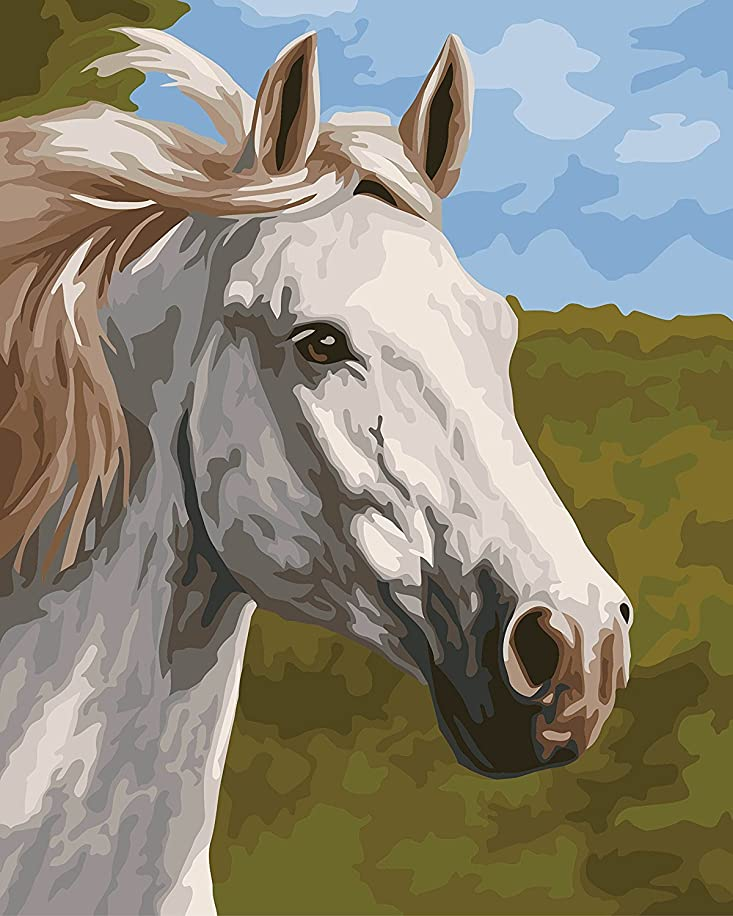 Lovebaby Oil Painting for Adults Kids Paint By Number Kit Digital Oil Painting Fine Horse 16X20 Inches