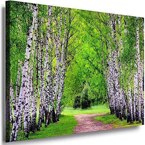Boikal Leinwand Bilder Wald See Berge Bild 50x60cm Einteilig XXL Wandbilder Birkenwald Natur Landschaft Motive Größe Kunstdrucke wählbar VI1P2-72K
