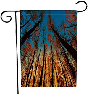 EMMTEEY Holiday Garden Flag Double Sided Burlap Decoration 12.5x18 Inch for Yard Outdoor Decor Garden Flag Autumn Landscape of Trees in Sunny Day