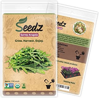 Organic ARUGULA Seeds (APPR. 1,100) Surrey Arugula - Heirloom Vegetable Seeds - Certified Organic, Non-GMO, Non Hybrid -USA